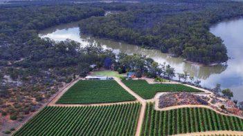 New digital platform to help Australian vineyards optimise irrigation use