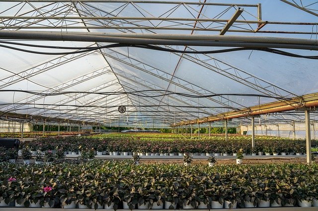 New agreement provides California farmers with access to nanobubble irrigation technology